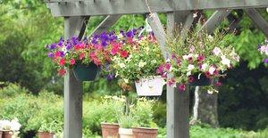 Für stimmungsvolle Gartenwohnwelten: