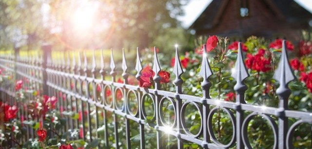 Hier hat Rost keine Chance: Ein Gartenzaun mit einer Anti-Rost Lackierung behält jahrelang sein edles Aussehen.