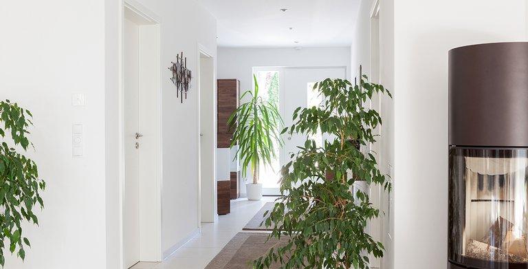 edition 126 von wolf haus gmbh wohngl. Black Bedroom Furniture Sets. Home Design Ideas