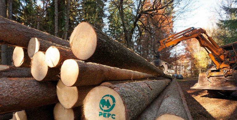PEFC-zertifiziertes Holz Copyright: SchwörerHaus KG